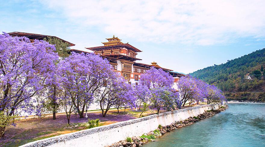 Bhutan Travel Guide: Best Time To Visit Bhutan 2021