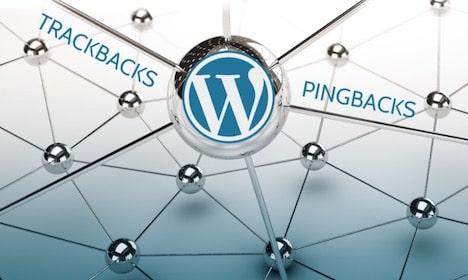 SEO Benefits of Pingback in WordPress